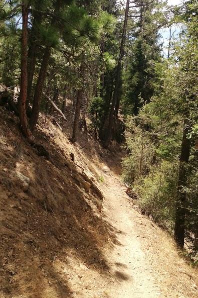 RR: Santa Ana River Trail (SART) - Southern California-img_1998.jpg