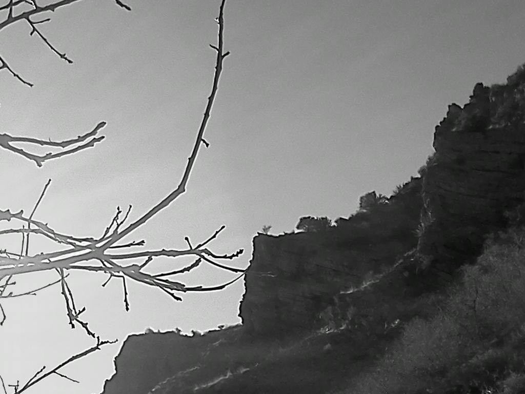 Black And White Photos Post 'Em-img_20120224_171841.jpg