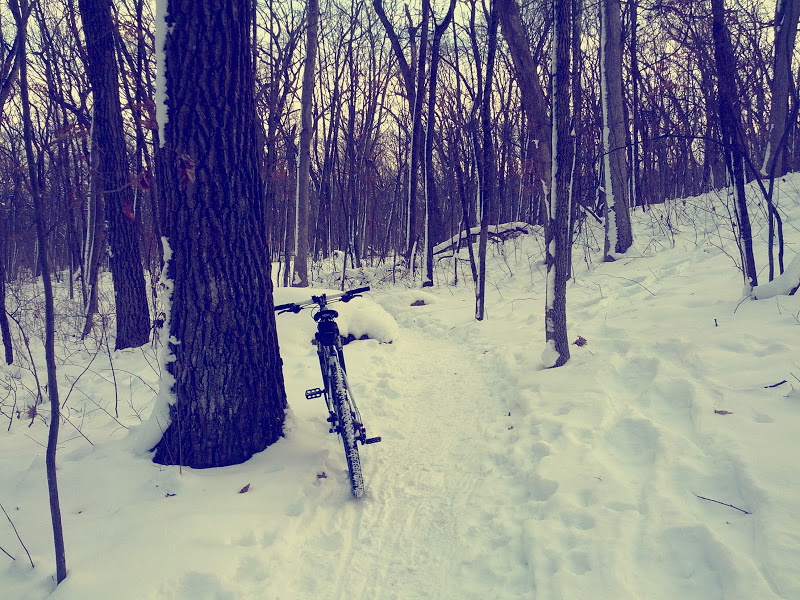 Need fat bike for cold wet winter?-img_20130105_185452.jpg
