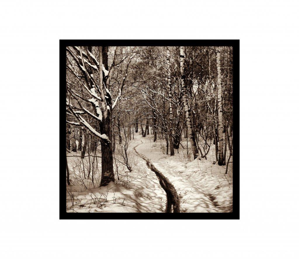 Black And White Photos Post 'Em-img_20130324_143817.jpg