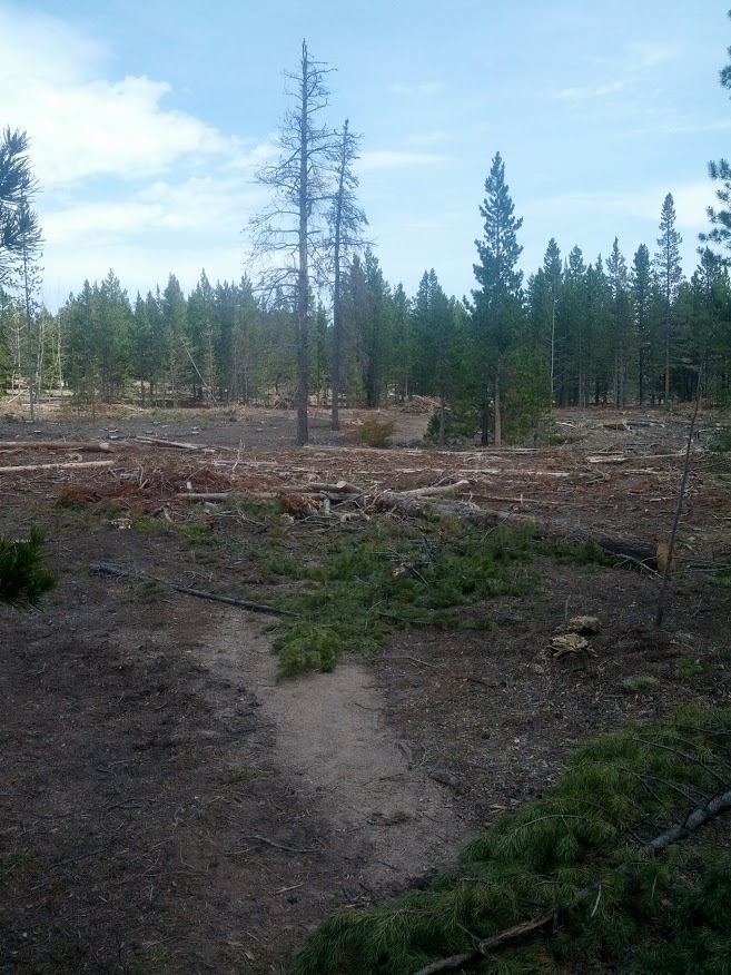 West Mag conditions-img_20130515_124821.jpg