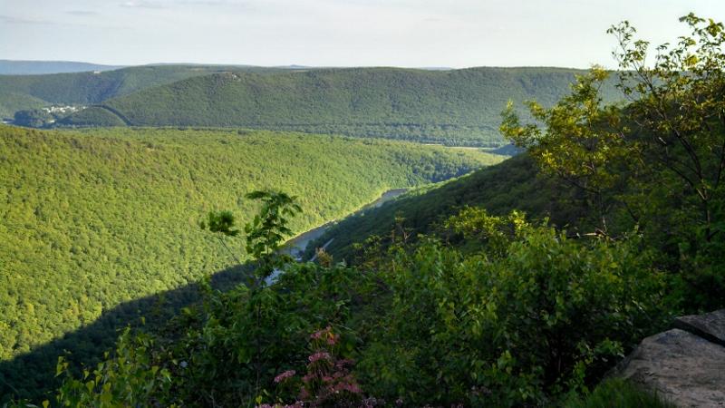 Broad Mountain Loop Trail (Jim Thorpe) ... Ruined!-img_20130605_180909_821-800x450-.jpg