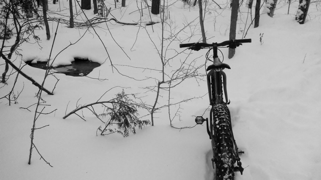 2014 Winter Fatbike Picture Thread-img_20140120_151945_888.jpg