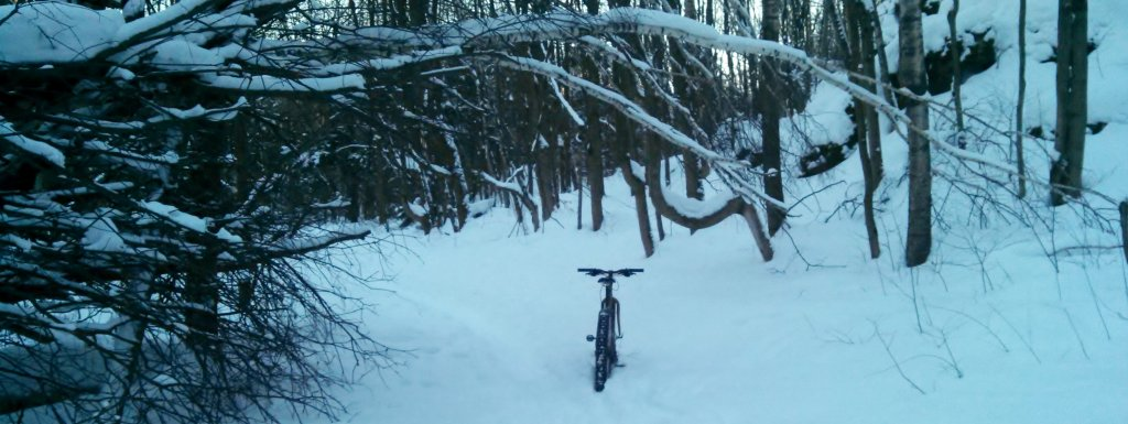 2014 Winter Fatbike Picture Thread-img_20140120_153031_970.jpg