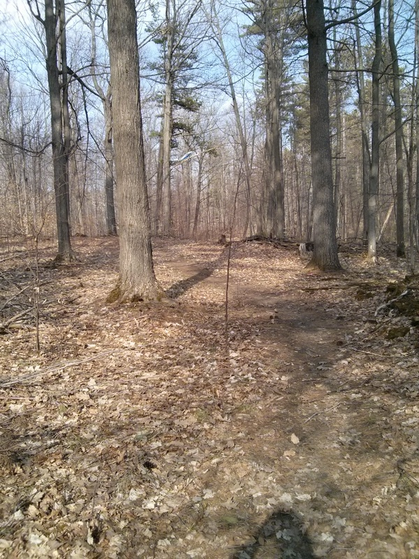 Dufferin Forest trail conditions?-img_20140420_165946.jpg