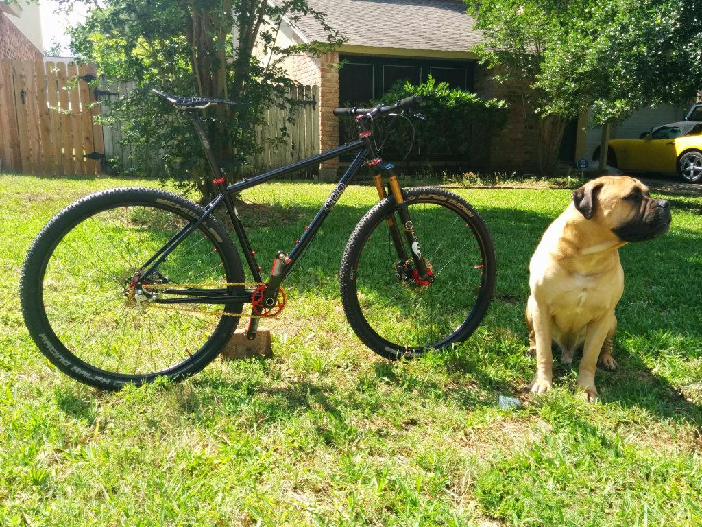 Post your dog with your single speed-img_20140518_105649.jpg