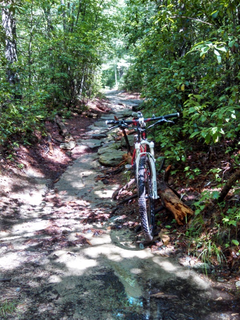 DuPont trail conditions-img_20140620_105029_173sm.jpg