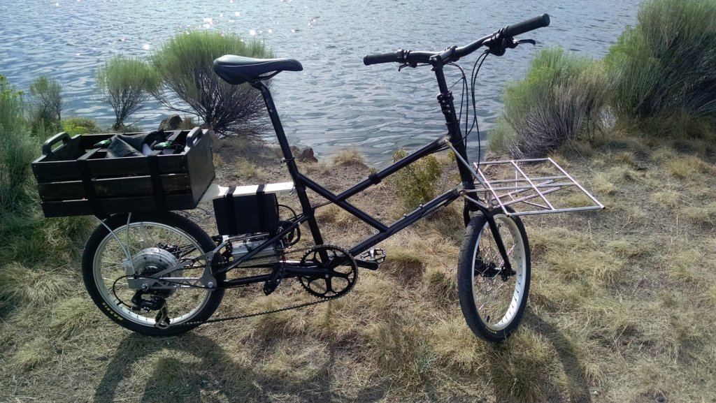 What do you think of this design? Mini Cargo Commuter Bike-img_20140718_170942858-large-.jpg
