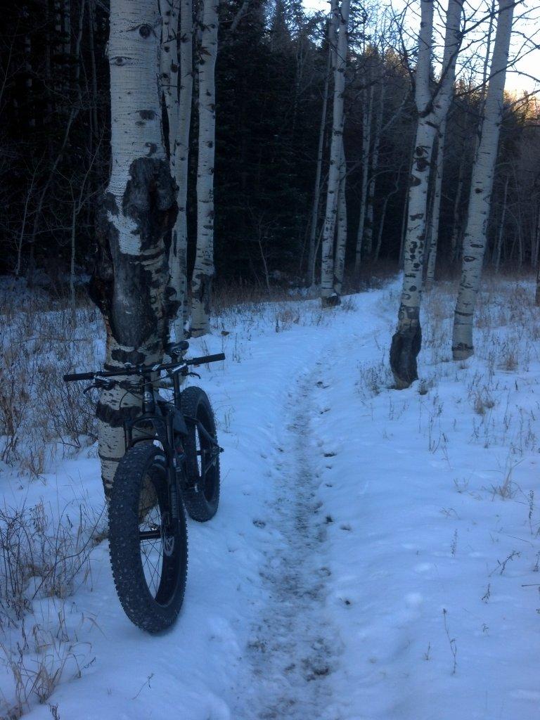 Rocky Mountain Blizzard Fat Bike-img_20141108_075122_250%5B1%5D.jpg