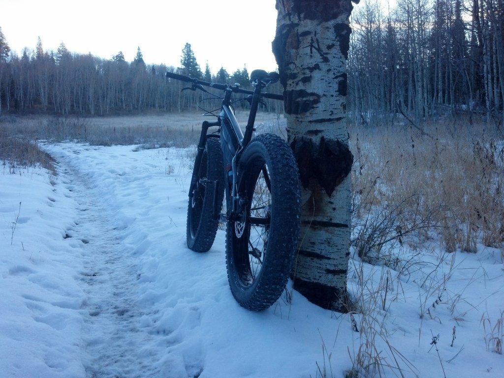 Rocky Mountain Blizzard Fat Bike-img_20141108_075157_704%5B1%5D.jpg
