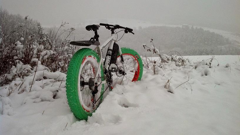 fat bike-img_20141126_154853_533.jpg