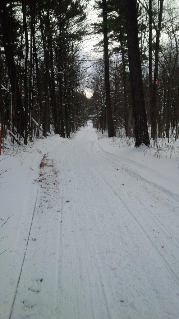 Totally Unofficial Snow Biking 2014/15 Thread-img_20150111_134333.jpg