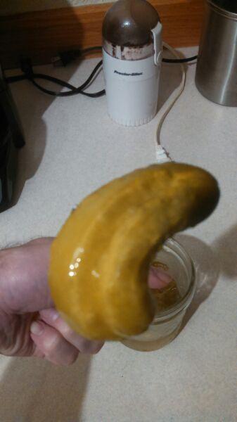 Crooked pickle-img_2015011654995.jpg