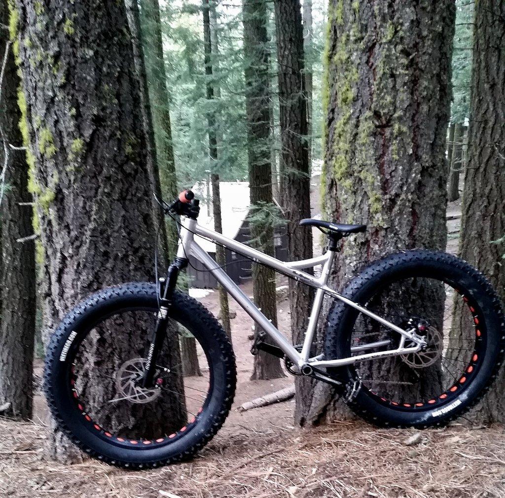 "RSD Bikes ""The Mayor""-img_20150117_163708.jpg"