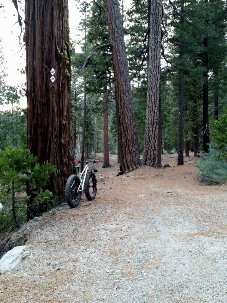 "RSD Bikes ""The Mayor""-img_20150118_163136.jpg"