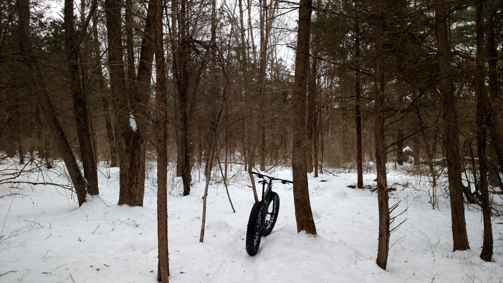 Nockamixon Winter 2015 Conditions-img_20150208_090521634.jpg