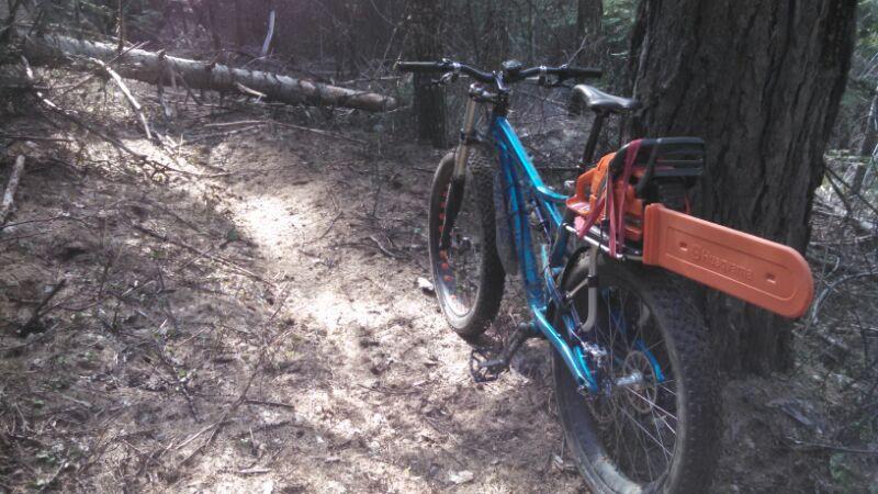 pack n pedal thule