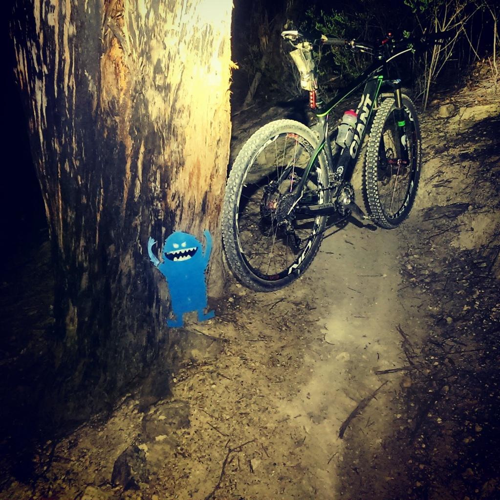 Bike + trail marker pics-img_20150313_214314.jpg
