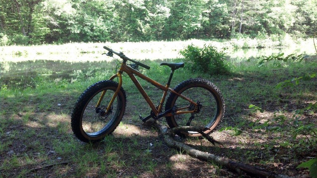 Trails near UMASS Amherst-img_20150603_140057_730.jpg