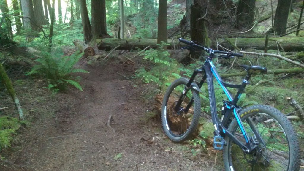 2014 Devinci Troy quick review-img_20150609_200030_759.jpg