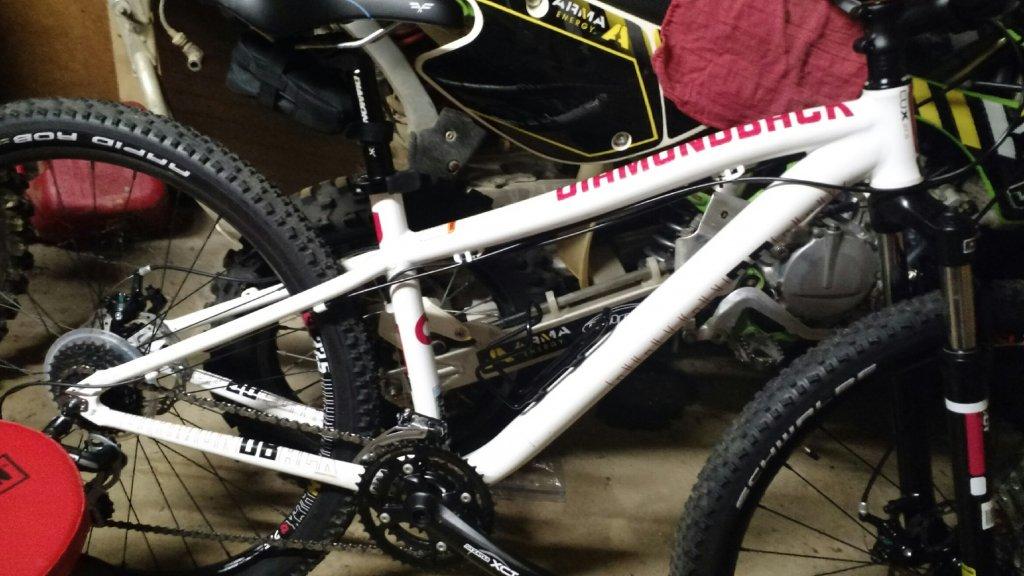 Trail Gator/Trail-a-bike on small frame 29er?-img_20150613_233927880.jpg