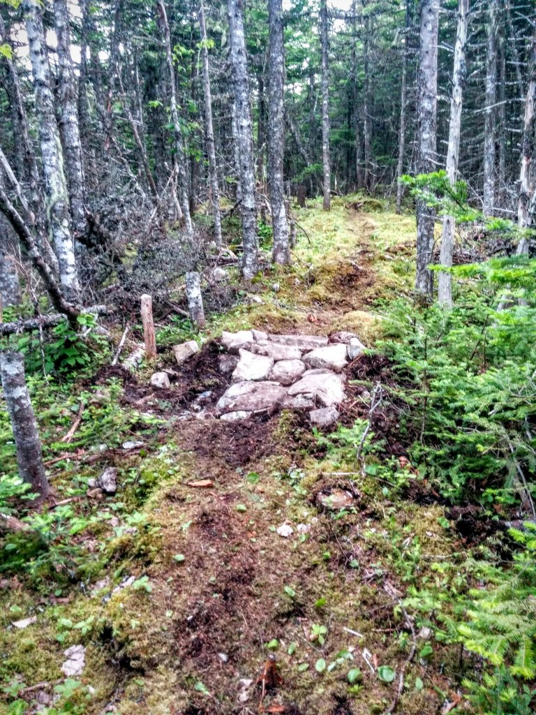 Building trail 2015... tips, tricks and trips-img_20150707_200456.jpg