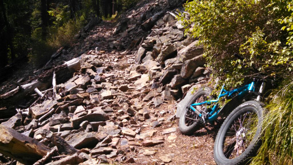 What ride did you do on your fat bike today?-img_2015071213680.jpg