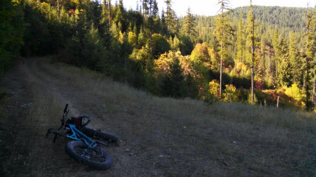 Daily fatbike pic thread-img_2015080822836.jpg