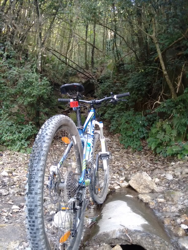 What did You do today on your mountain bike?-img_20151216_132006980.jpg