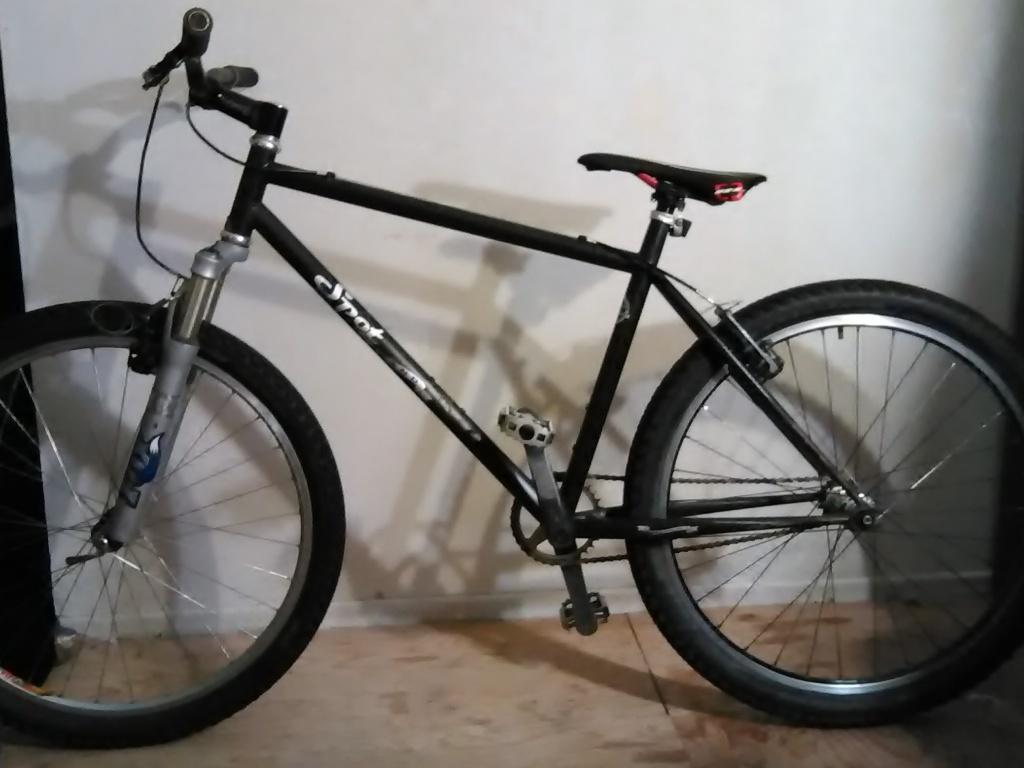 Please help me identify my Spot Brand bike!-img_20160311_182609.jpg