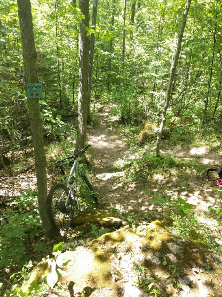 2016 Canfield Balance Trail Photo Thread-img_20160709_151638a.jpg