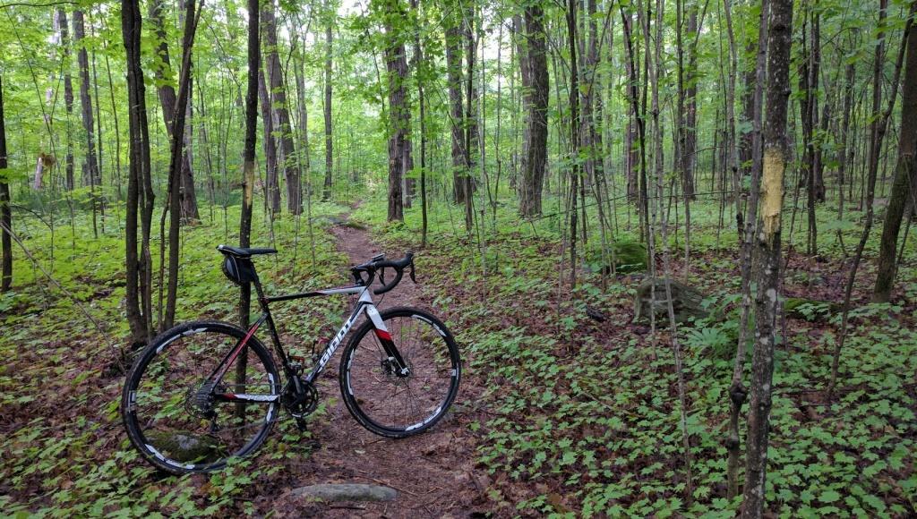 Cross Bikes on Singletrack - Post Your Photos-img_20160818_093037.jpg