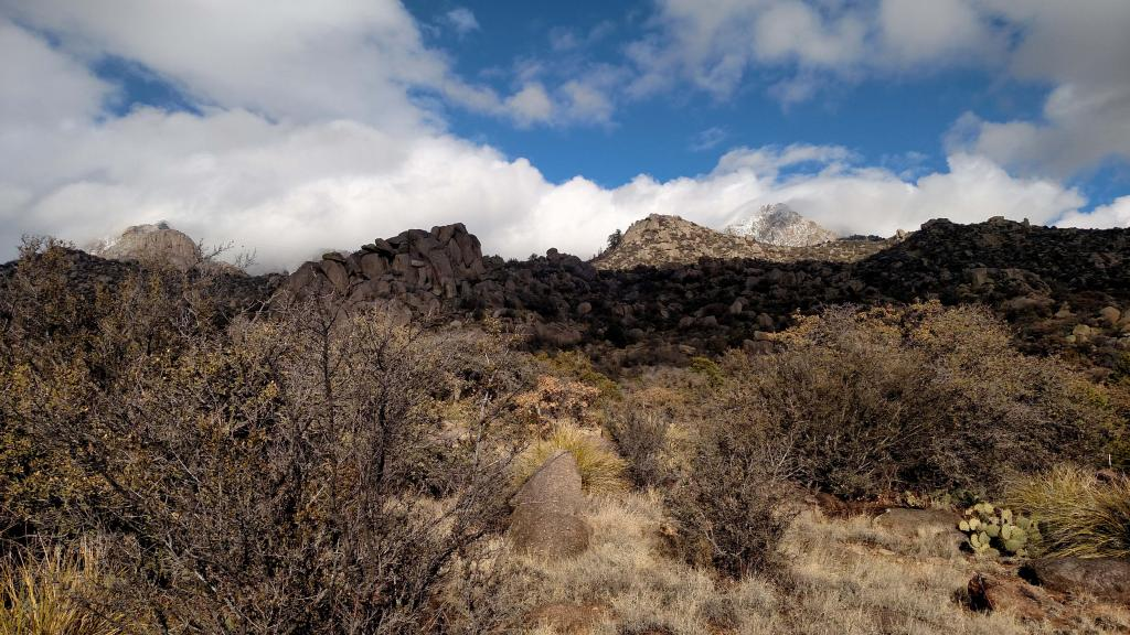 How are the winters in NM?-img_20170118_145438534.jpg
