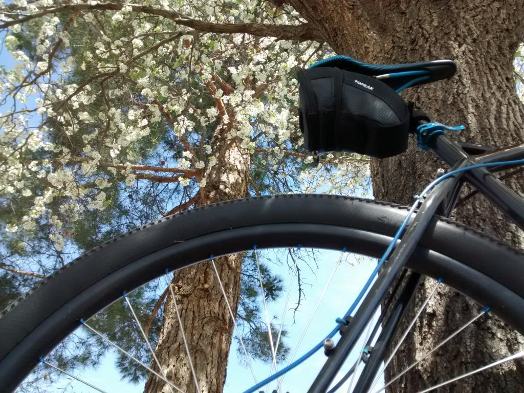 Post pics of your Surly!!!-img_20170308_120058898.jpg