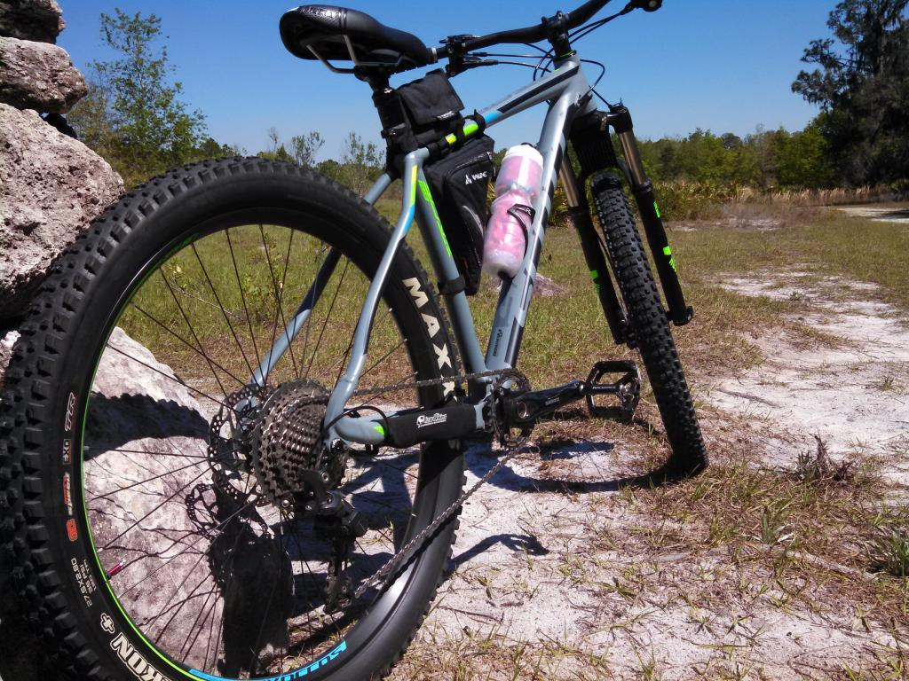 Going back to a hardtail maybe?-img_20170315_141529_319.jpg