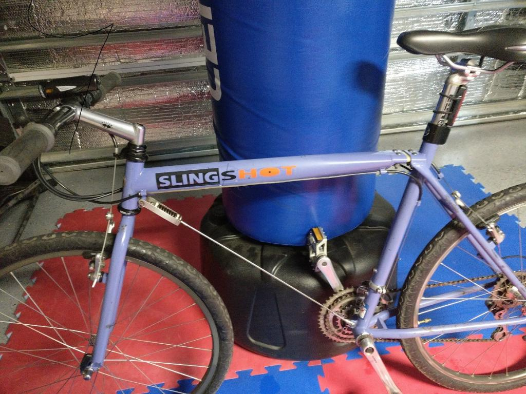 Official Slingshot Bikes Thread-img_20170325_182801.jpg