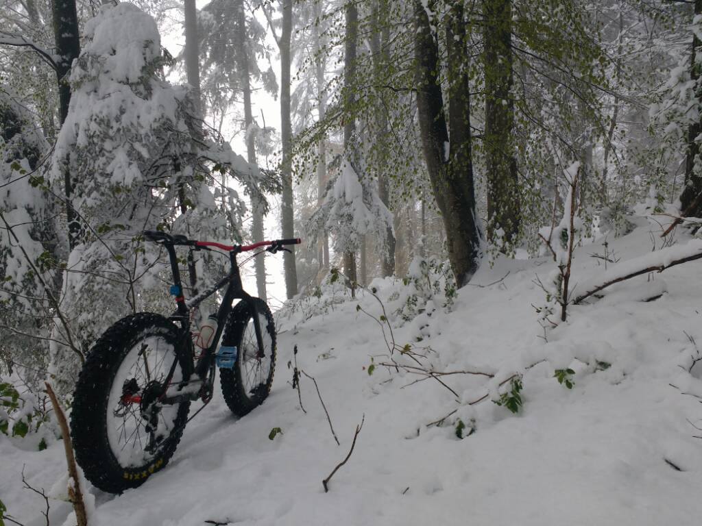 Daily fatbike pic thread-img_20170428_144304080.jpg