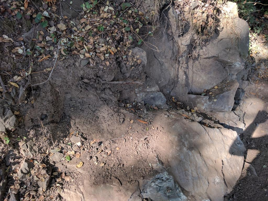 Waterdog trail nerfing on Chaparral?-img_20170723_091533.jpg