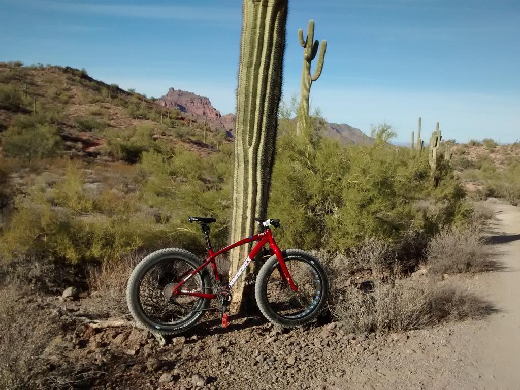 Fat Biking and health-img_20180101_151058939.jpg