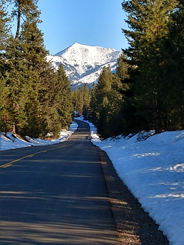 How was your commute today?-img_20180209_090240019_hdr.jpg
