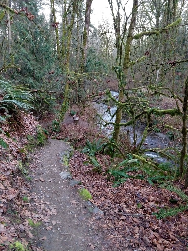 Do you ride singletrack to work?-img_20180212_171853446_hdr.jpg