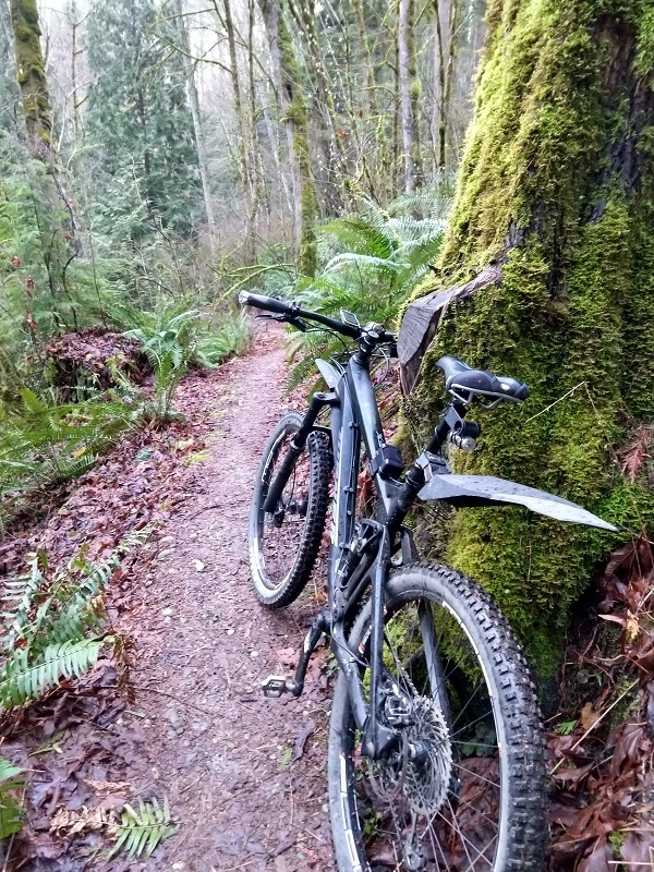 Do you ride singletrack to work?-img_20180214_171507622_hdr.jpg