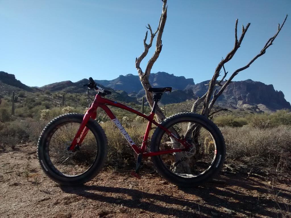 Fat Biking and health-img_20180225_091018550.jpg