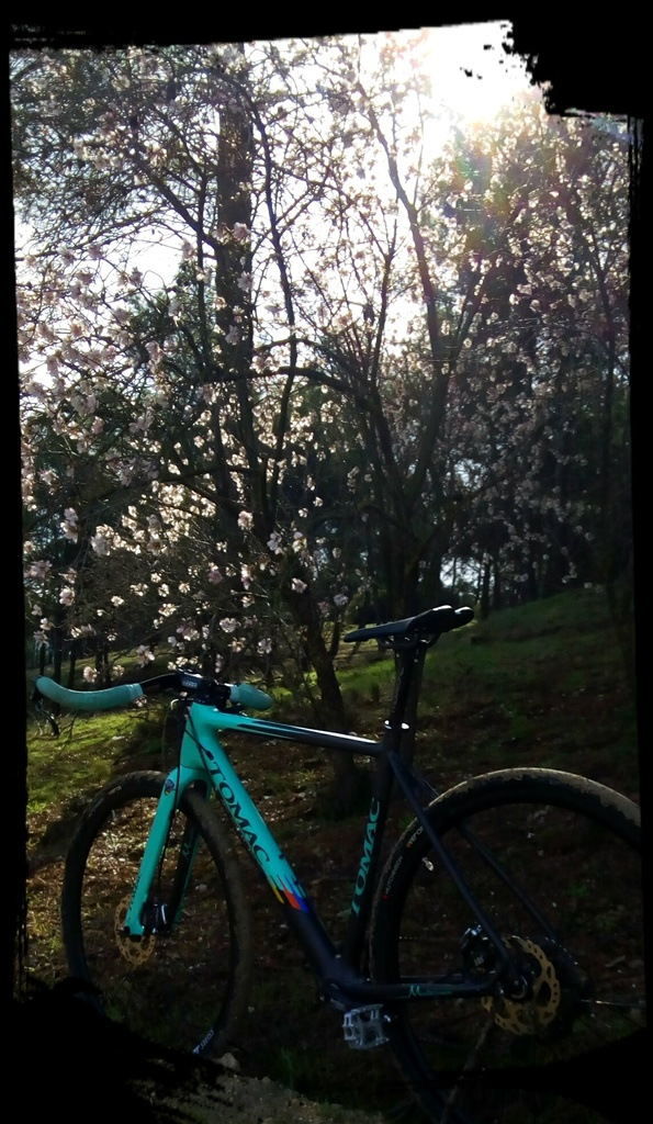 Post Your Gravel Bike Pictures-img_20180318_112133_411.jpg
