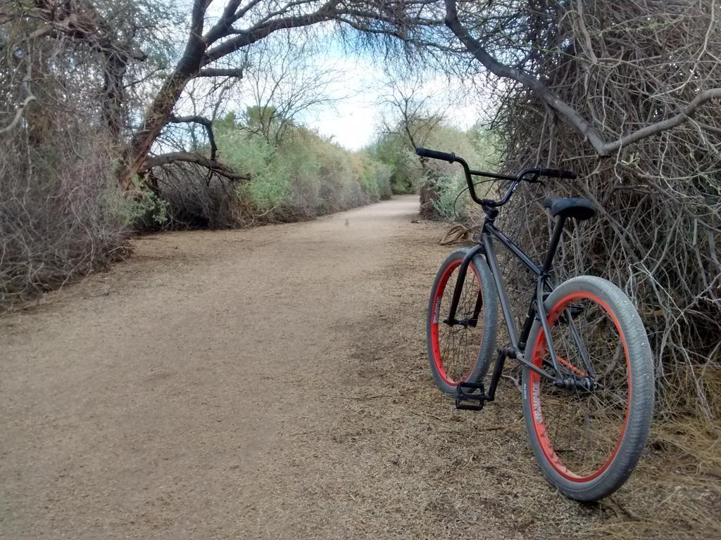 Fat Biking and health-img_20180321_171936713_hdr.jpg