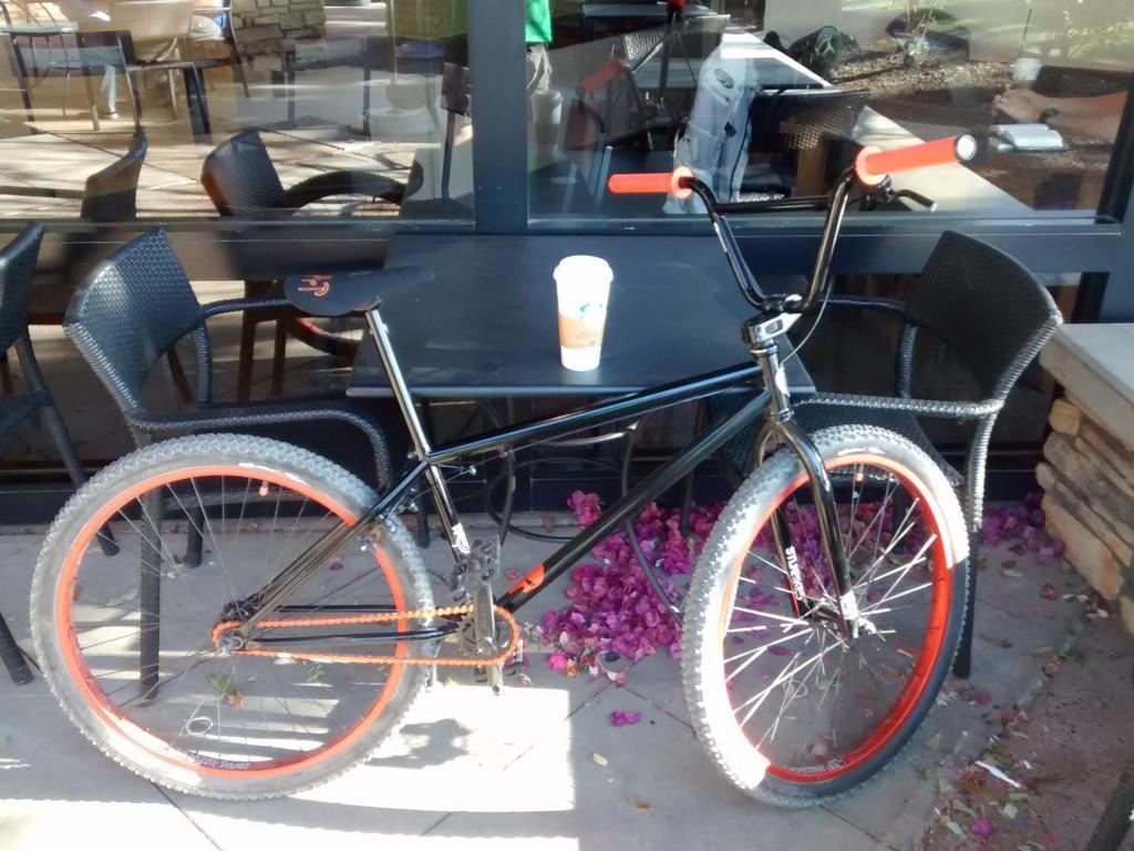 Fat Biking and health-img_20180414_075828010.jpg