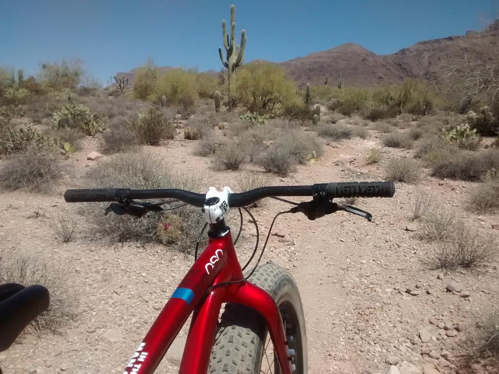 Fat Biking and health-img_20180415_111654354.jpg