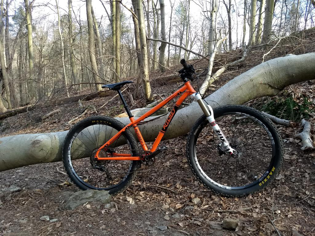 Ritchey Timberwolf build-img_20180423_174402369.jpg