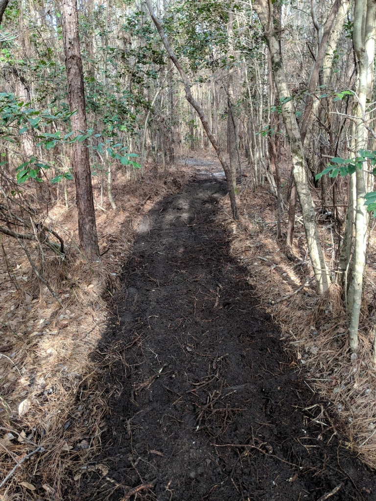 Show a Pic of Your In-process / Recently Finished Trail-img_20190127_143359-1125x1500.jpg