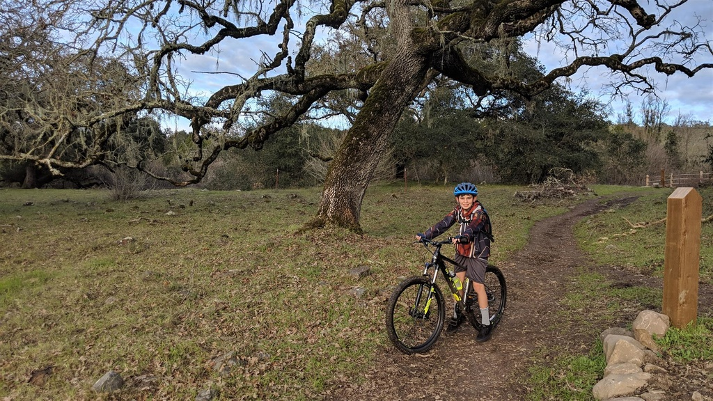 did you ride today?-img_20190207_162855-large-.jpg